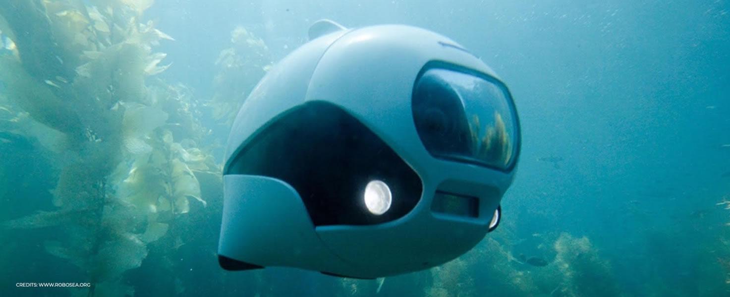 ROBOSEA BIKI Drone sottomarino